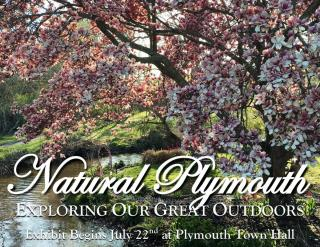 Natural Plymouth Exhibit